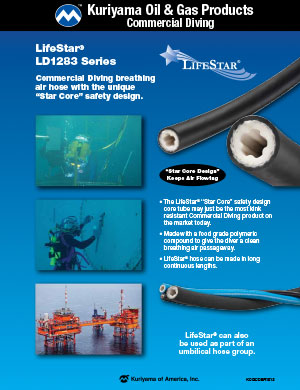 Oil & Gas Products Commercial Diving Brochure