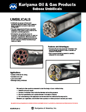 Oil & Gas Products Subsea Umbilicals Flyer
